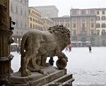 roman-medici-lion.jpg