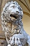vacca-medici-lion.jpg